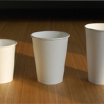 PLA Coated Paper Hot Cup